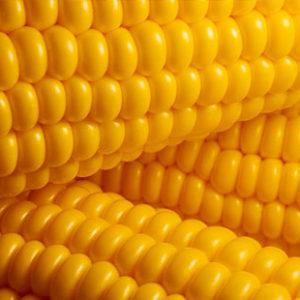 buttery-corn